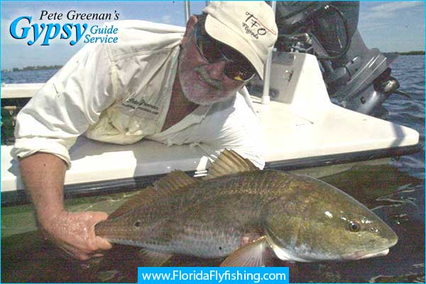 Capt. Pete Greenan lands a nice Redfish