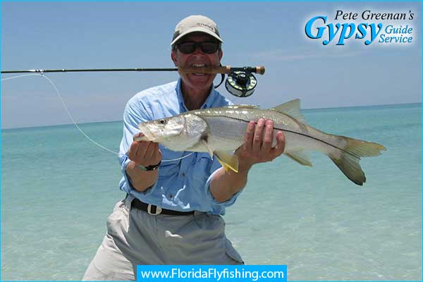 Snook on the flyrod caught on the beach near Boca Grande