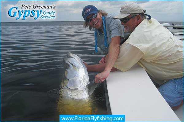 Big Tarpon being landed while flyfishing