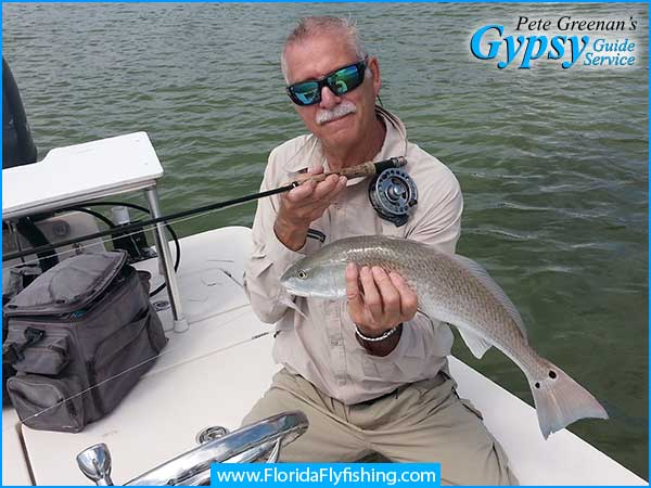 Florida Redfish with 2 tail spots caught while fly fishing Boca Grande