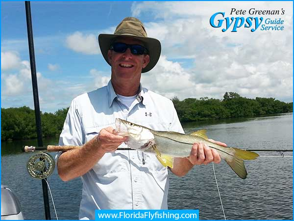 Florida snook caught while fly fishing