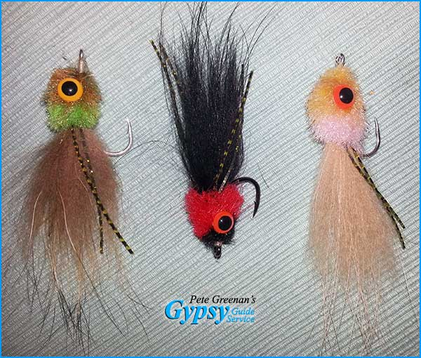 tarpon fly designed by Pete Greenan - The Scoop